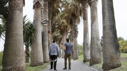 Two male youths walk away from the camera under tall trees